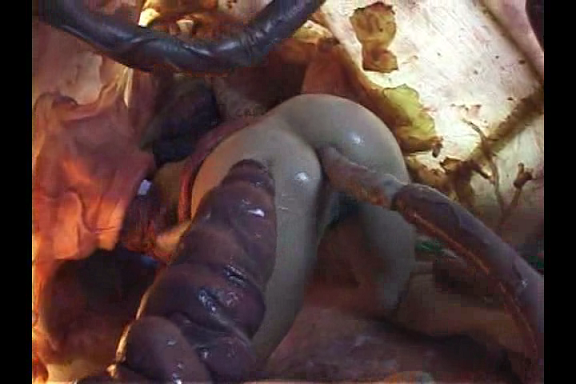 Tentacles Porn Octopussy Japan