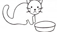 coloriage-chat