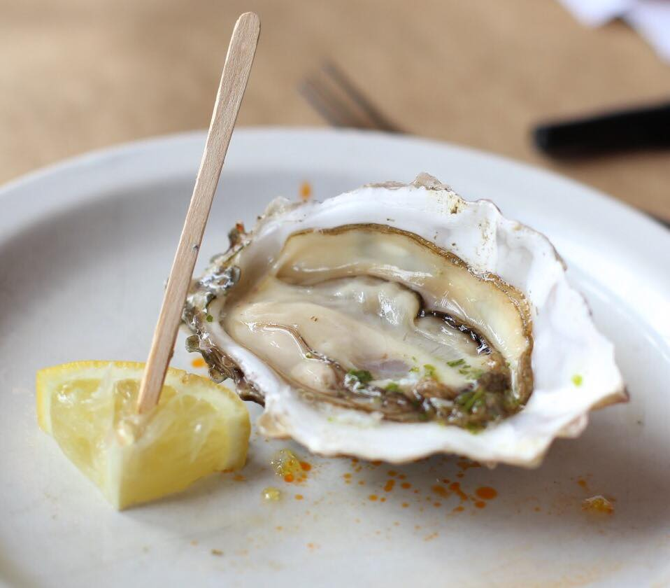 raw-oyster-2